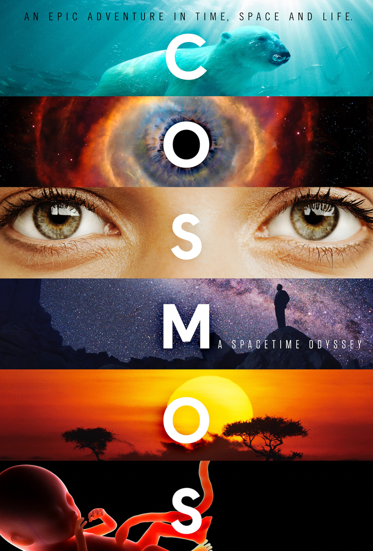 Cosmos-Cover-HD